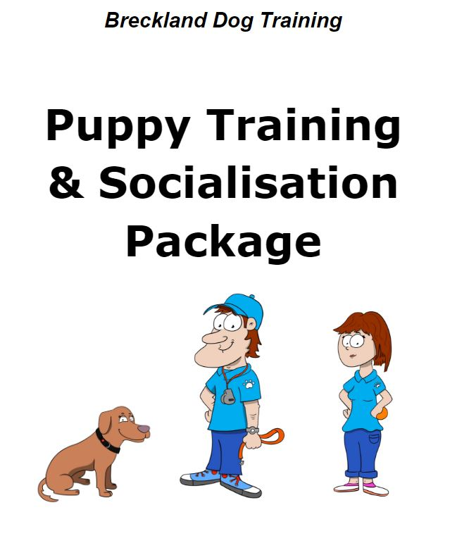 Puppy Training & Socialisation Package